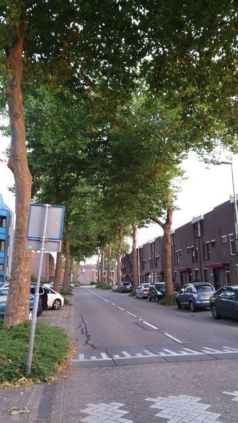Bewonersparticipatie in Zoetermeer 1
