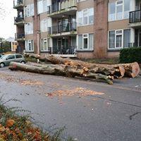 Bewonersparticipatie in Zoetermeer 4