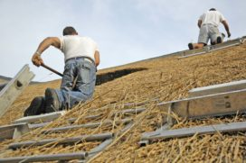 Rieten dak voor het eerst goed te verzekeren