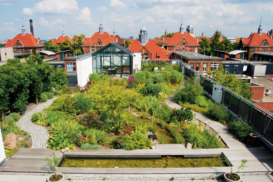 Opinie Flip Krabbendam_Aanbevelingen om het hoofd koel en de voeten droog te houden