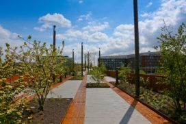 Brug als een park geopend in Den Bosch