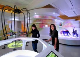 Kinderboekenmuseum weer open voor publiek