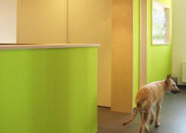 Nieuw architectenbureau: Studio Tjalling Homans