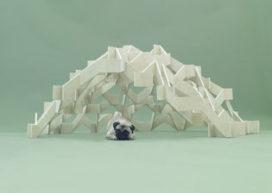 Architecten en hun honden