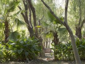Agendatip: Secret Gardens (TENT) en De Geheime Tuin (CBK)