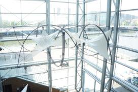 Agendatip: vernuftige draagbare paviljoens in Muziekgebouw aan het IJ