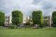 Attachment e urban green vierkante boom 80x53