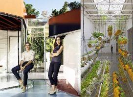 SelgasCano ontwerpt Serpentine Pavilion Londen