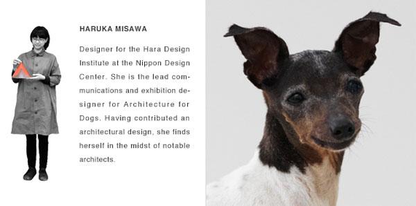 Hara Design Institute Japan - Japanse Terrier