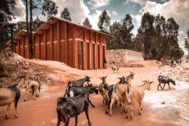 Een bibliotheek voor Muyinga, Burundi