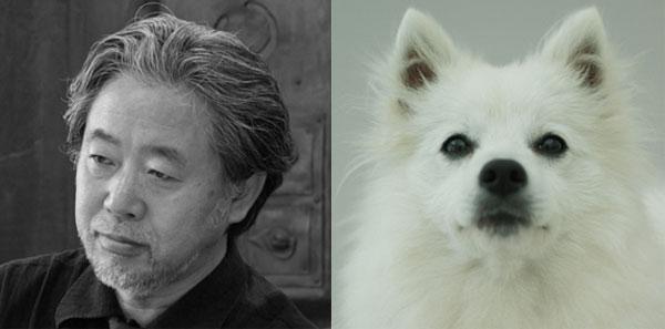 Hiroshi Naito - Keeshond
