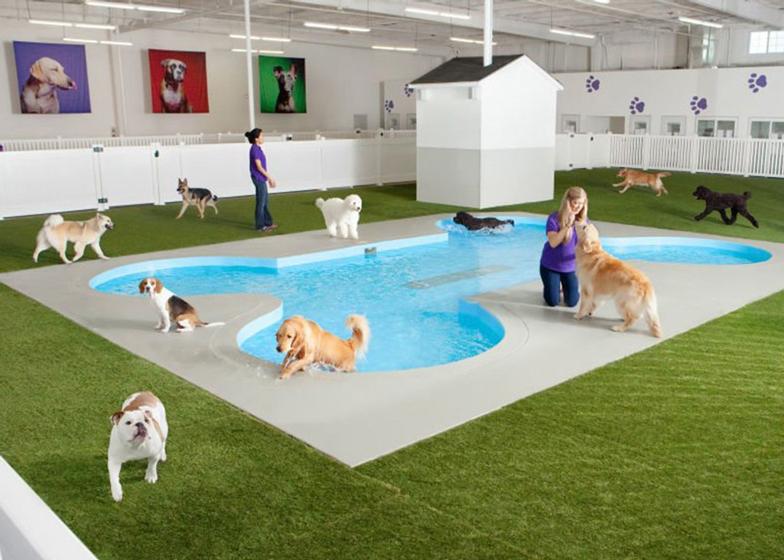 De Ark Animalterminal JFK door Gensler - Render Ster van de Week-9