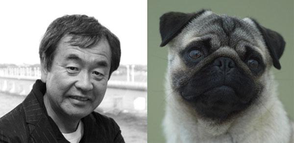 Kengo Kuma - Pug