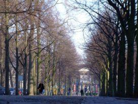 Ideeën voor een beter Den Haag