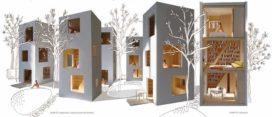 Almere bouwt een Tiny buurtje