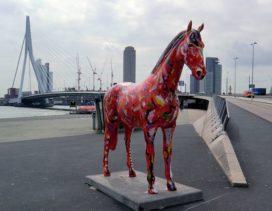 Paarden versieren Rotterdam