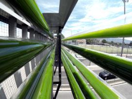 Algenboerderij Cloud Collective verrijkt ongelijkvloerse kruising Geneve