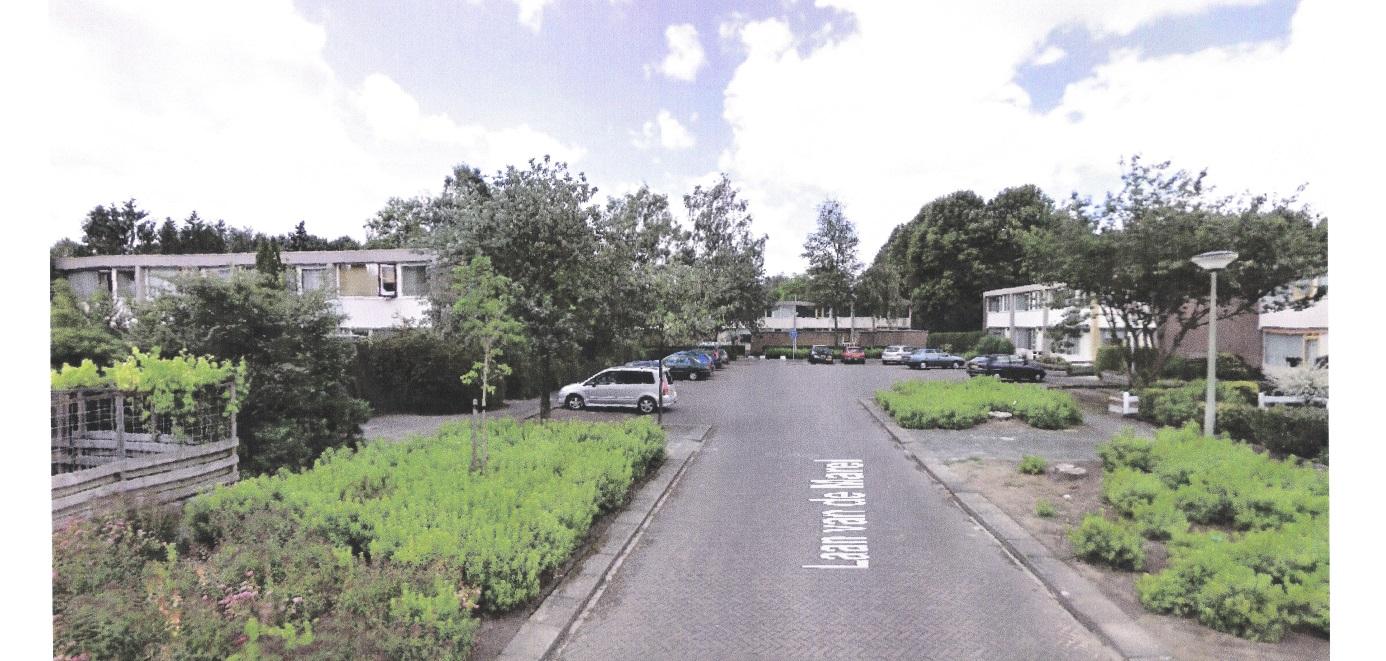 Opnie Flip Krabbendam Een boom als stad
