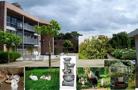 Zinnenprikkelende Tuin Nominatie Zorginnovatiewedstrijd