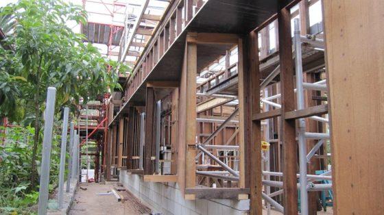 Ecohouse in brisbane au door riddel architecture 2 560x314