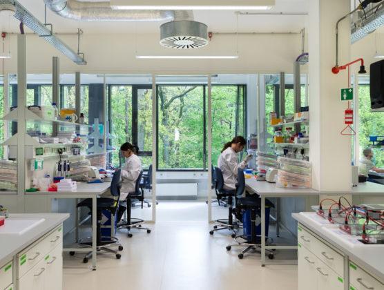 Max planck instituut in nijmegen door wiegerinck 5 556x420