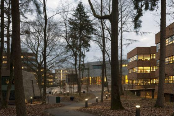 Werken in het groen achmea campus apeldoorn 1 560x373