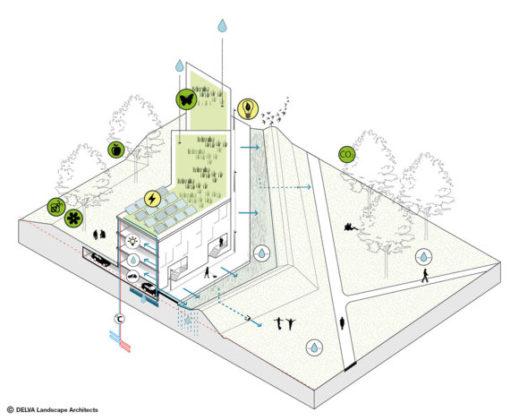 Delva landscape architects amsterdam steven delva ion veurne suikerpark duurzaamheid 580x469 519x420