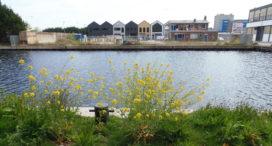 Architecten op Transformatieplein zien kansen in Rijswijkse haven