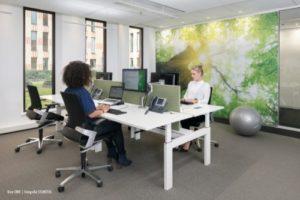 Mensen presteren gemiddeld 10 procent beter in een gezond kantoor