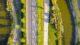 Cornelis van der lelylaan maassluis plein06 4 80x45