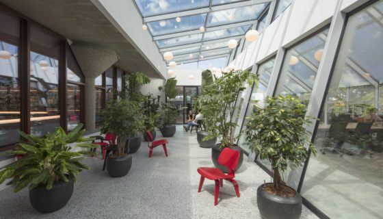 Katja hogenboom studio felsch architecten asian library 121a1556 560x320