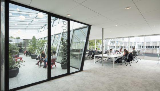 Katja hogenboom studio felsch architecten asian library university leiden 121a1518 560x320