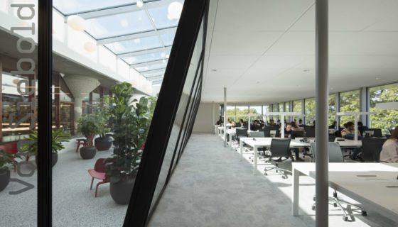 Katja hogenboom studio felsch architecten asian library university leiden 121a1641 560x320