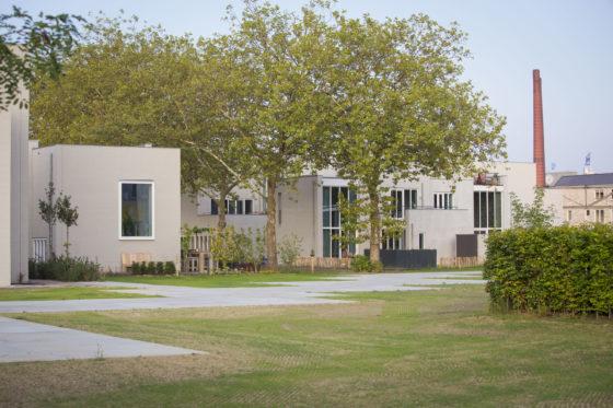 Houbenvanmierlo   cohousing 19 r gorissen 560x373