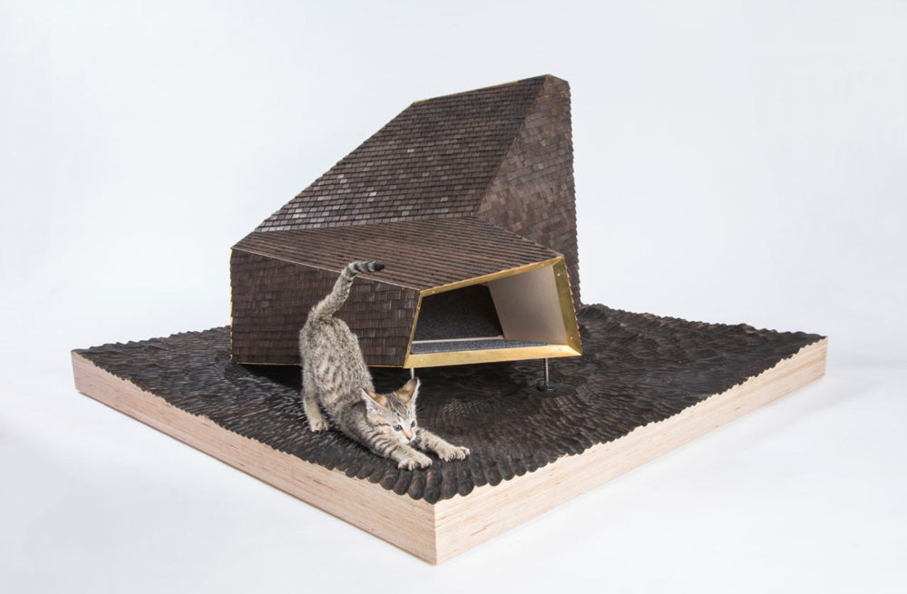 Blog – Architects for Animals