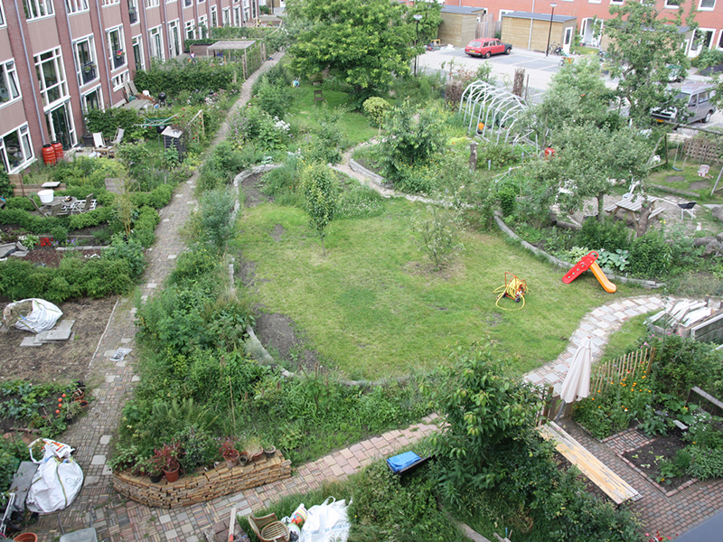 Collectieve tuin 'de Driehoek' in Katendrecht, Rotterdam. Herinterpretatie van een binnenterrein door bewoners, in samenwerking met ecoloog Peter Kremer en tuinarchitect Marieke de Keijzer.