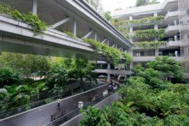 Blog – Waarlijk duurzame of waarlijk natuurlijke architectuur?