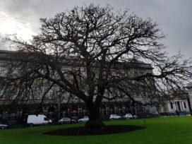 Gezocht: nieuwe entree en gebouw voor Dublin University College