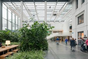Twintig jaar bouwen aan het Erasmus MC, sleutelen aan een economische motor