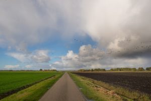 Blog – Geef ons landschap nationale urgentie!